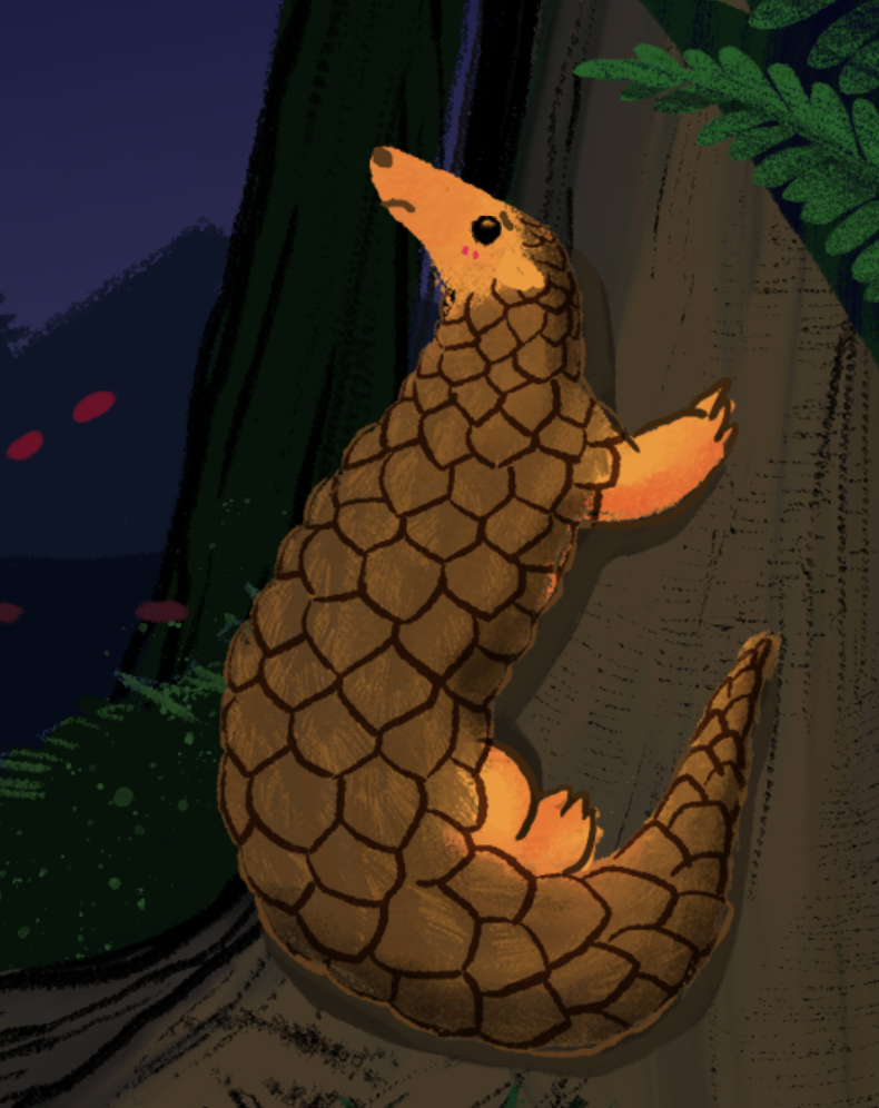Stories - The Pangolin Reports